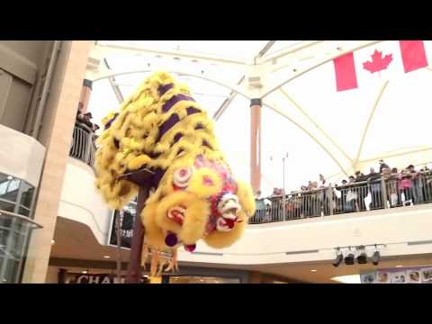 Chinese New Year Celebrations - Lion Dance - Brentwood Town Centre 2012