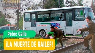 ULTIMO CAPITULO NOVELA POBRE GALLO