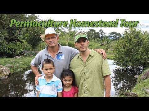 Costa Rican Permaculture Homestead Tour Part 1
