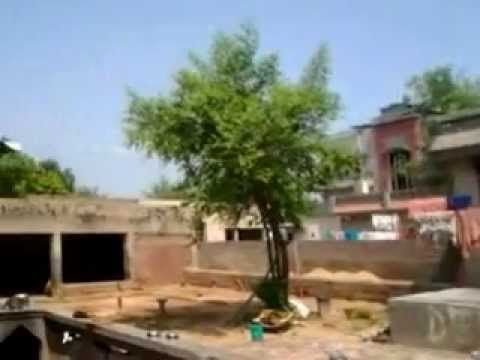 Punjabi Desi Home video