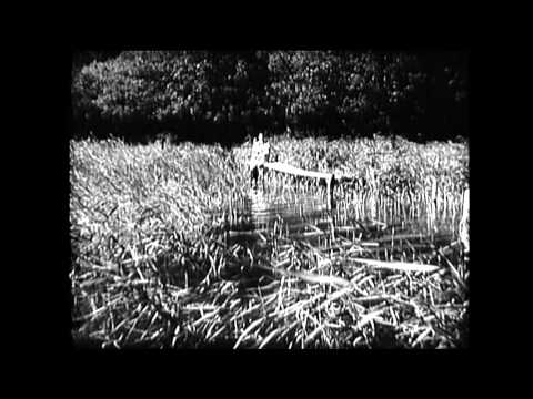 Thumbnail of video Sumie - Speed Into (Official Video)