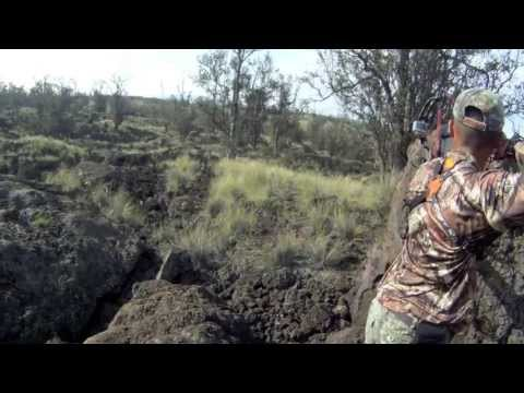 GoPRO: 2013 Hawaii bow hunting