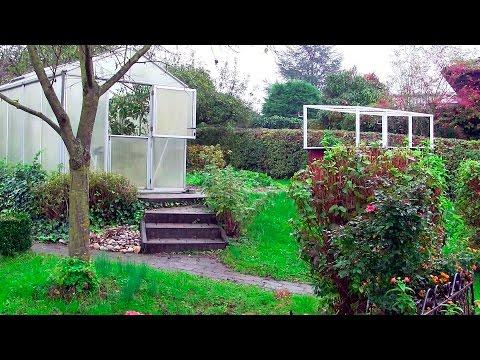 Gewächshaus Im Herbst (Gewächshaus & Hochbeet Perfekt! Film 16)