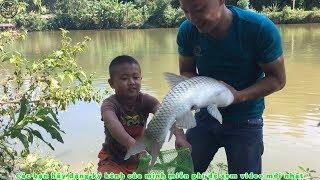 Câu cá giải trí _ Câu cá liên hoàn toàn cá to _ Fishing lakes are more fish too