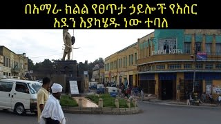 Special Report: Mass Arrest in Amhara Region