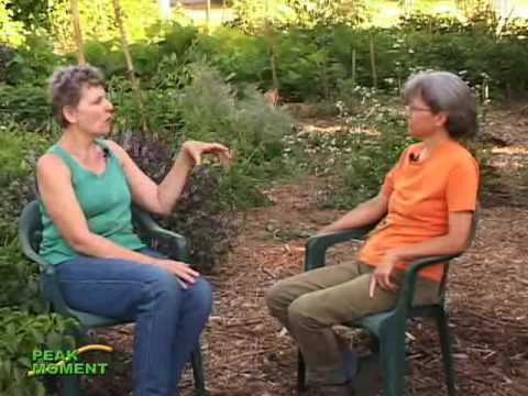 Corporate Couple Become Permaculture Activists