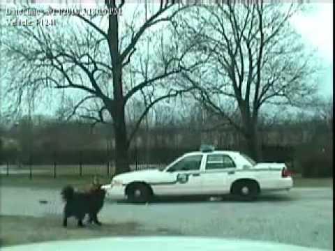 Dogs_VS_Police