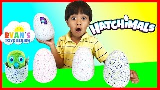 HATCHIMALS SURPRISE EGGS OPENING Magical Animals Hatching EGG Spin Master Kids Toys Ryan ToysReview