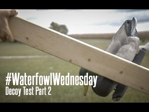 Floating Duck Decoy Test Part 2: Waterfowl Wednesday