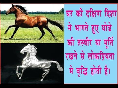 पाना चाहते हैं प्रसिद्धि और तरक्की तो रखे घोडे की तरवीर thumbnail