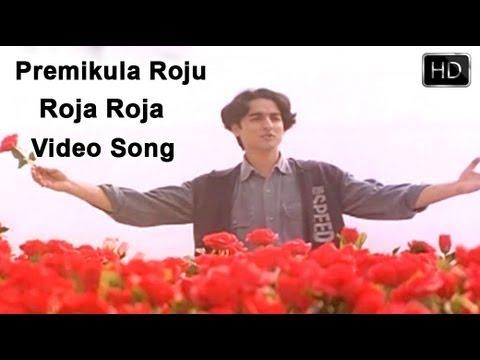 Premikula Roju Movie | Roja Roja Video Song | Kunal, Sonali Bendre, Ramba video