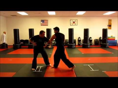 HARRISON MARTIAL ARTS-Jeet Kune Do (Concepts) Flow. Image 1