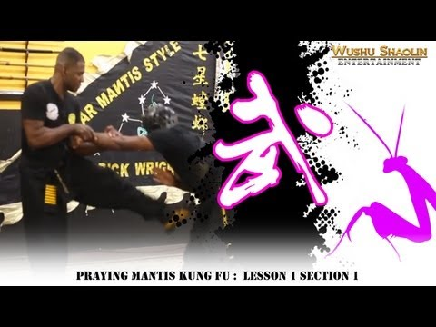 Praying Mantis Kung Fu Tutorial Beng Bu 崩步  : Lesson 1 Section 1 Image 1