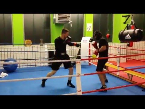 Boxclub Viking e.V