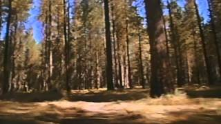 Surviving The Game Trailer 1994