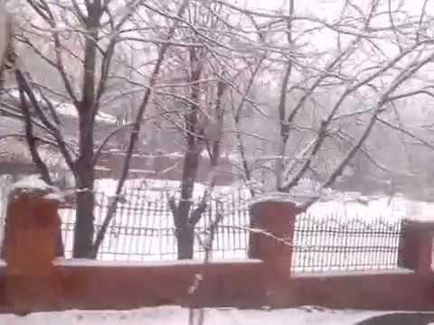 Season's First Snowfall At Srinagar, Jammu and Kashmir