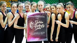 Desio - Golden Butterfly Gala 2015