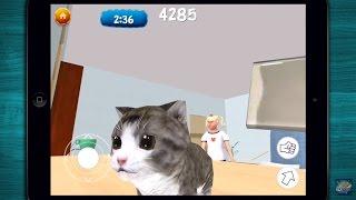 🐱 Cat Simulator: Kittens 2017 - NEW Funny & Cute Simulation