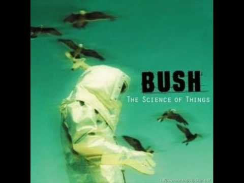 Bush - Cemicals Between us