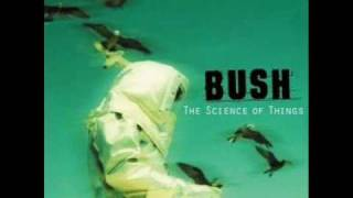 Watch Bush The Chemicals Between US video