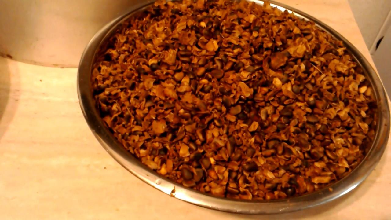 Очистить кедровый орех в домашних условиях 622