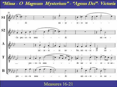 Jan Tollius - O quam gloriosum est regnum