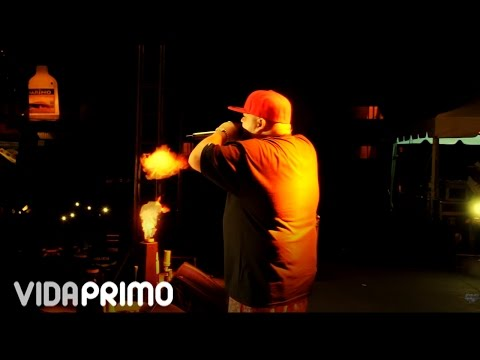 Ñejo – Y Si La Ves (Colombia, En Vivo) (2016) videos