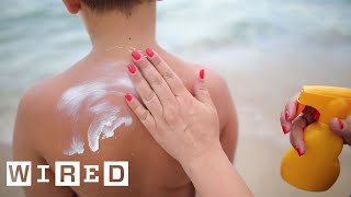 Doctor Explains How Sunscreen Affects Your Body | WIRED