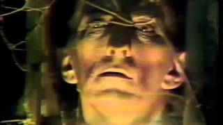 Dark Shadows 1976 TV promo