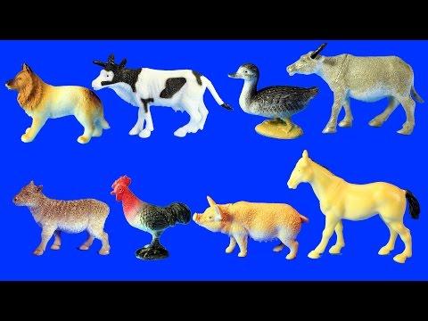 Learn Farm Animals Names For Kids - Animal Toys Video thumbnail