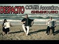 Luis Fonsi Despacito Cover Accordion Gianluca Pica Feat E Viti C Celletti A Russo mp3