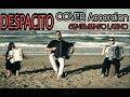 Luis Fonsi Despacito Cover Accordion Gianluca Pica Feat E Viti C Celletti A Russo mp3
