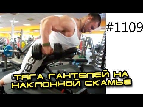 Александр Щукин. Тяга гантелей на наклонной скамье. Тяга гантелей с упором грудью в наклонную скамью