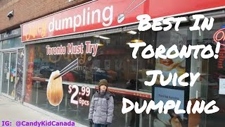 Best Soup Dumplings!  Juicy Dumpling Review (Toronto) 🥟🥟🥟