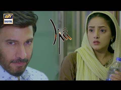 Shiza, Hashir Ke Bachne Ki Umeed Waise Bhi Bohat Kum Hai