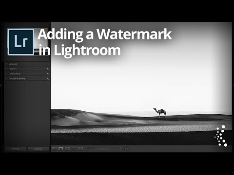 Adding a Watermark in Lightroom Classic