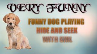 FUNNY DOG PLAYING HIDE AND SEEK WIYH GIRL