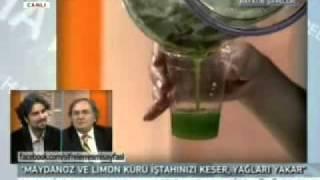 Prof.Dr. İbrahim Saraçoğlu - Maydanoz Kürü