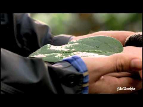 Тайный круг - Меченный злом (1-й сезон)