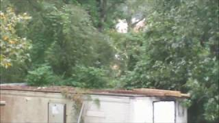 BIGFOOT***THRU THE BACK GLASS***MUST SEE**
