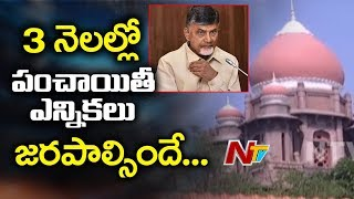 High Court Ordered AP to Hold Panchayat Elections in 3 Months | NTV