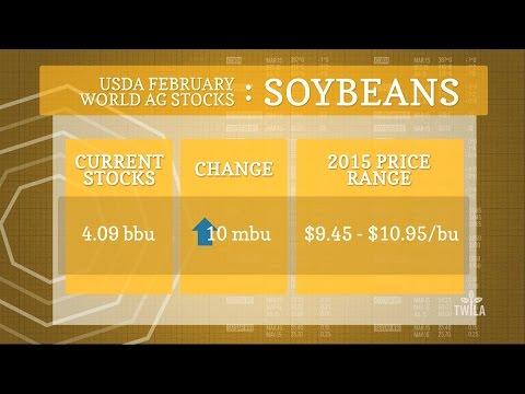 Bottom Line — USDA February World Ag Stocks