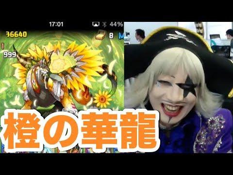 【パズドラ】橙の華龍 地獄級にゴー☆ジャス端末で挑戦!ハク初陣!