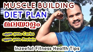 Muscle Building Diet Plan in Malayalam| how much carbohydrate and protien should you take a day ?