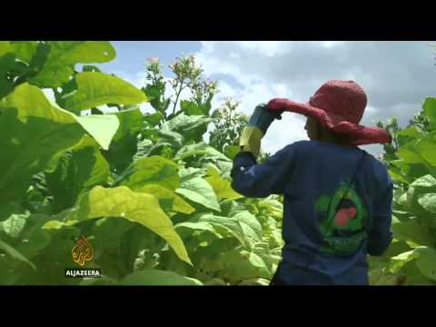 Harsh conditions for US child workers