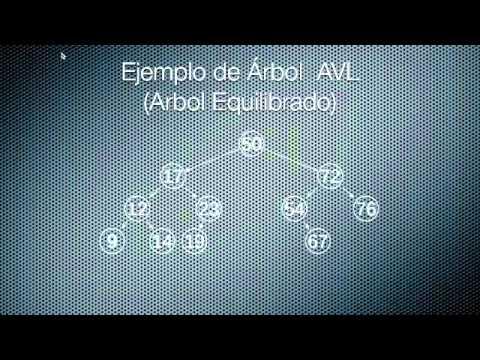 Arboles Binarios UVM