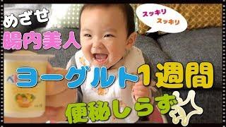 【赤ちゃんの離乳食】ヨーグルト1週間 便秘予防 生後9ヶ月 みはるんchannel
