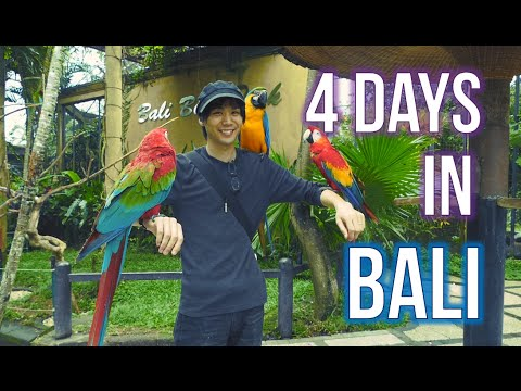 Our trip to Bali!