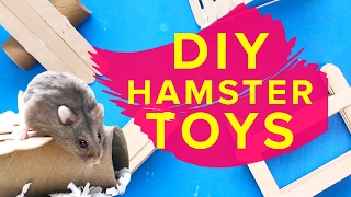 Popsicle Stick Pet Toys