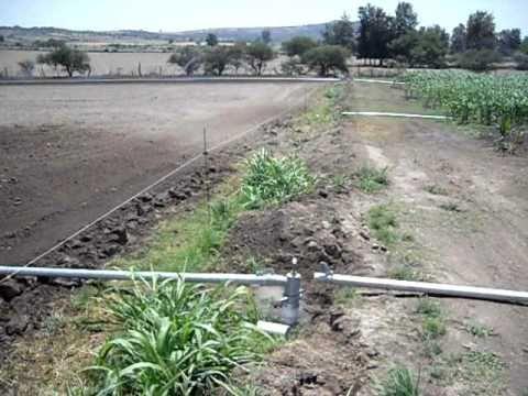 Sistema de riego por aspersion para maiz agro irrigacion for Aspersores para riego de jardin